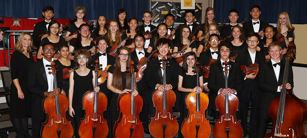 CCHS Chamber Orchestra photo in 2016