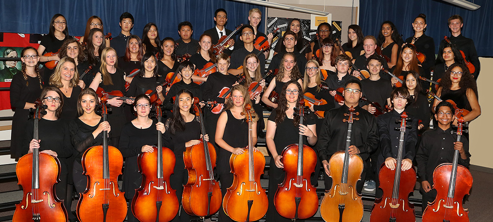 CCHS Orchestra 2016 Concert Orchestra group photo